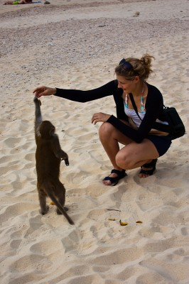 Monkey island at Ha Long Bay