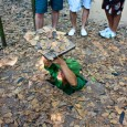 One of the big tourist attractions in Ho Chi Minh City are the Cu Chi tunnels. Cu Chi is a suburban district of Ho Chi Minh City and the tunnels...